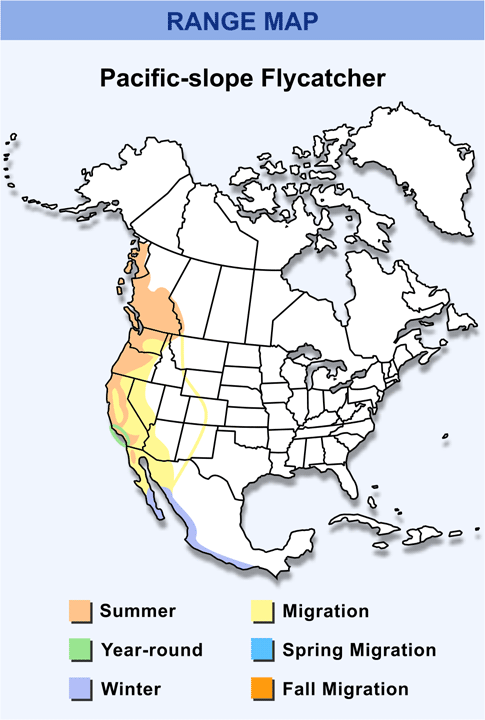 Range Map for Pacific-slope Flycatcher HD