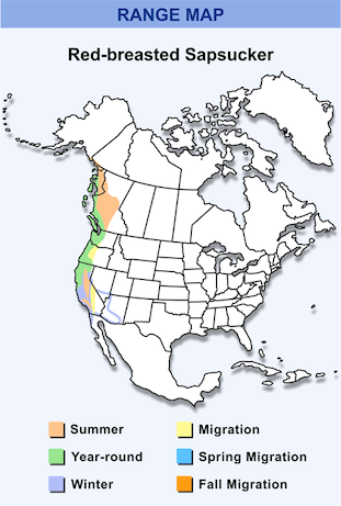 Range Map for Red-breasted Sapsucker HD