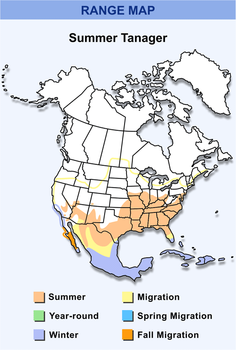 Range Map for Summer Tanager HD