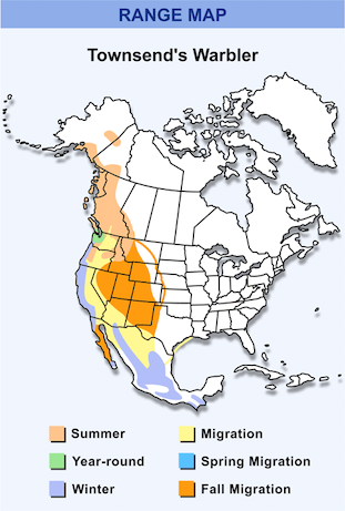 Range Map for Townsend's Warbler HD