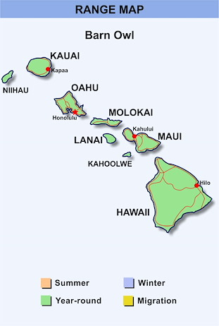 Range Map Hawaii for Barn Owl