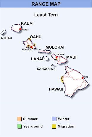 Range Map Hawaii for Least Tern