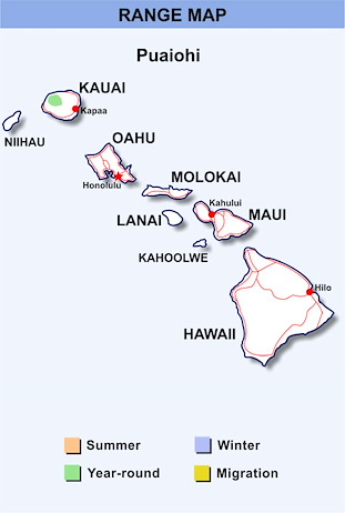 Range Map Hawaii for Puaiohi